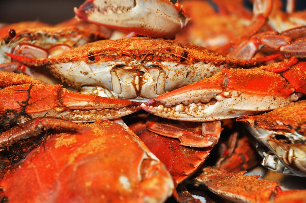 How Many Crabs Do You Need for a Cookout Feast or Party?